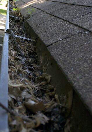 Before-Gutter Cleaning
